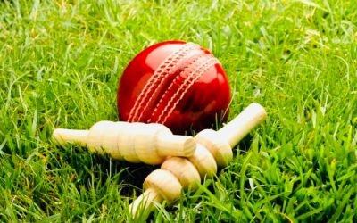 Coronavirus & Cricket Updates